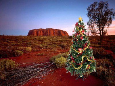 yellow-octopus-australian-christmas-images-41
